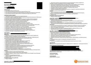 Пример составления резюме на русском языке, ИМ Консалтинг, директор it