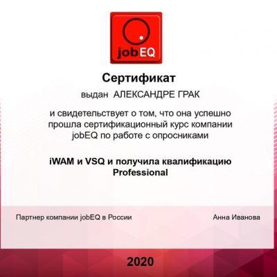 Александра Грак Job EQ (опросники iWAM и VSQ) квалификация Professional
