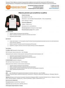 Профессиональный образец резюме для устройства на работу